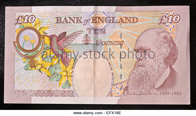 united kingdom monetary policy essay Uk monetary policy is set by the bank of england chancellor of the exchequer of the united kingdom from 1992 to 2007 prime minister of the uk between 2007 and.