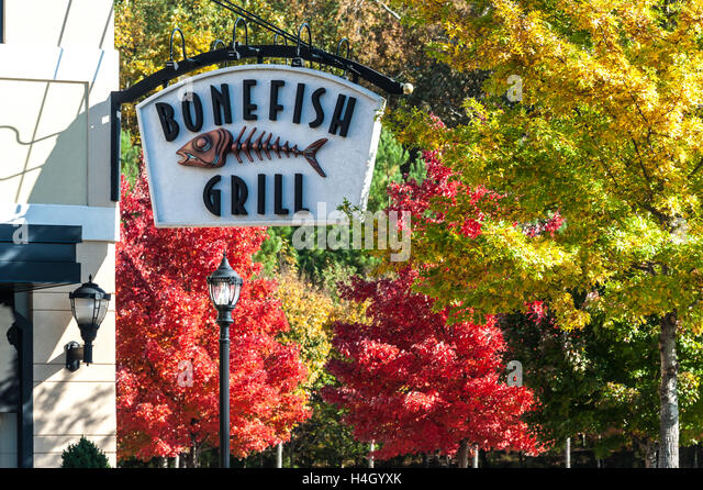 Bonefish grill georgia / Half price books marketplace coupon