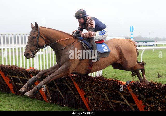 william horse racing