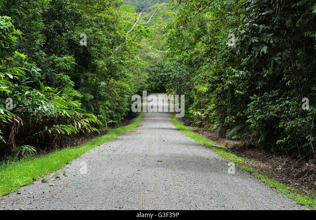 Daintree stock photos daintree stock images alamy for Diwan queensland