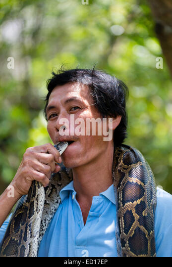 Pet snake stock photos amp pet snake stock images alamy