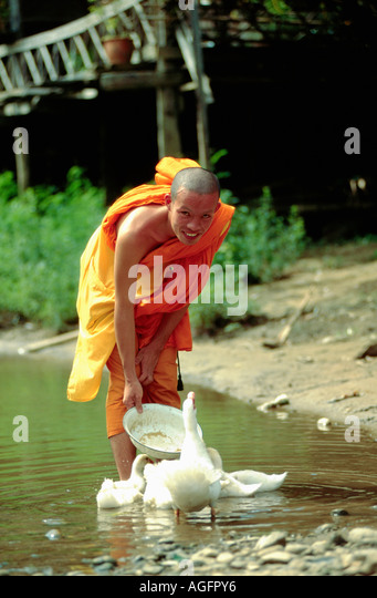feeding hills buddhist personals Feeding hills online dating for feeding hills singles 1,500,000 daily active members.