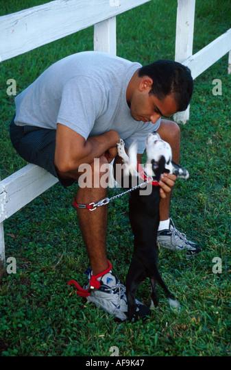 Miami Dog Training School