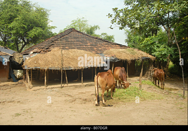 Tribal home stock photos tribal home stock images alamy for Tribal house