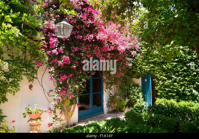 Personable Orange Trees Andalusia Stock Photos  Orange Trees Andalusia Stock  With Lovable Courtyard Of The Orange Trees In Palacio De Viana Cordoba Andalusia  Spain  With Extraordinary Garden Leaf Sweeper Also Expandable Garden Hose Reviews In Addition Recliner Chairs Garden And Dobbies Garden Centre Preston As Well As Parking In Kew Gardens Additionally Apprentice Gardener Jobs From Alamycom With   Lovable Orange Trees Andalusia Stock Photos  Orange Trees Andalusia Stock  With Extraordinary Courtyard Of The Orange Trees In Palacio De Viana Cordoba Andalusia  Spain  And Personable Garden Leaf Sweeper Also Expandable Garden Hose Reviews In Addition Recliner Chairs Garden From Alamycom