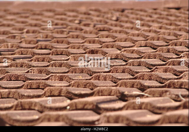 Roof Top Roofing Tiles   Stock Image