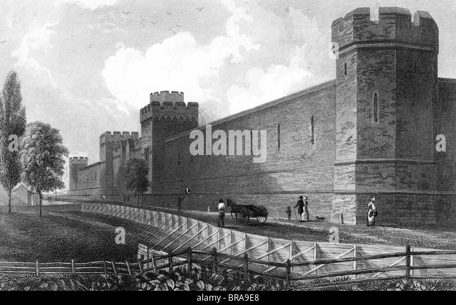 20th century penitentiary system History of the penal system  the first national penitentiary was  during the late nineteenth century from this developed the system of releasing offenders.