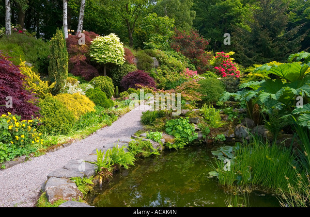 Inspiring Gardens Spring Hillside Stock Photos  Gardens Spring Hillside  With Marvelous View Of Pool And Gunnera At Lea Gardens Near Matlock In The Derbyshire Peak  District England With Beauteous Belsay Hall And Gardens Also Where Is Dubai Miracle Garden Located In Addition Garden Cages And Supports And Lotus Flower Garden As Well As Garden Mosaic Additionally Narrow Metal Garden Arch From Alamycom With   Marvelous Gardens Spring Hillside Stock Photos  Gardens Spring Hillside  With Beauteous View Of Pool And Gunnera At Lea Gardens Near Matlock In The Derbyshire Peak  District England And Inspiring Belsay Hall And Gardens Also Where Is Dubai Miracle Garden Located In Addition Garden Cages And Supports From Alamycom