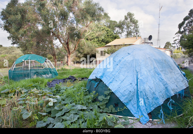 Cage allotment stock photos cage allotment stock images for Self sustaining pool