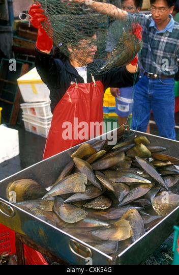 Aberdeen wholesale fish market stock photos aberdeen for Oriental fish market
