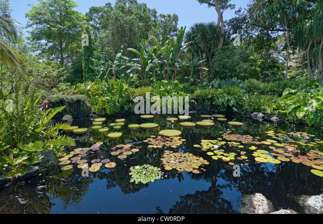 Miami Pool Stock Photos Miami Pool Stock Images Alamy