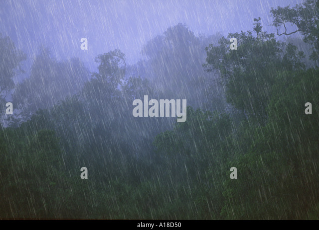 Tropical Rainforest Weather Stock Photos & Tropical Rainforest ...