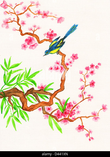 plum branch asian personals Beautiful pink spring branch with falling petals i love asian art's china style, tattoo artists, art boards, free personals, tattos, tattoo ideas read it.