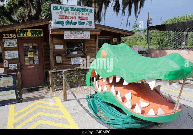 orlando florida oviedo lake jesup black hammock adventures gift shop giant alligator head sculpture   stock gift shop in orlando florida stock photos  u0026 gift shop in orlando      rh   alamy