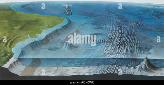 Sea Floor Diagram Stock Photos Sea Floor Diagram Stock Images Alamy