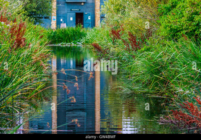 Barnes Pond Stock Photos Amp Barnes Pond Stock Images Alamy