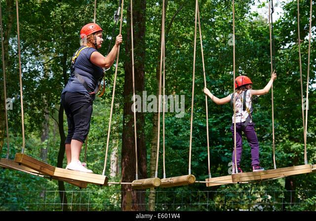 Aerial Tree Trekking Center Parcs Stock Photos Amp Aerial
