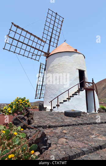 jardin de cactus lanzarote canary islands spain europe stock image