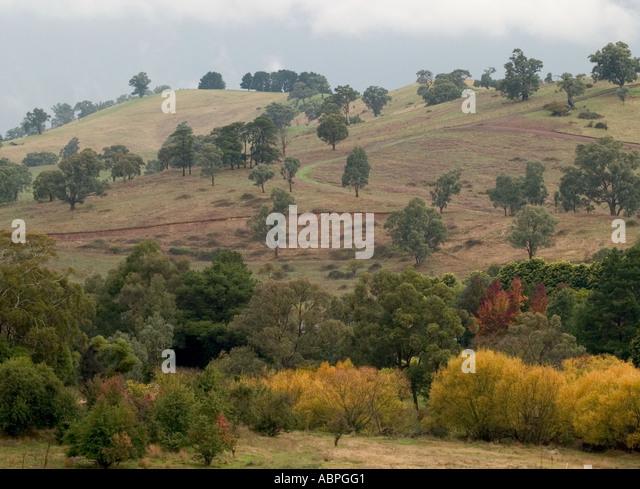 South australia landscape autumn stock photos south for Adelaide hills landscape