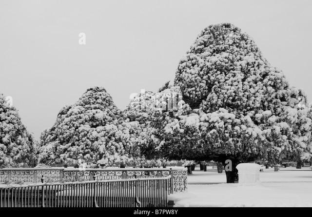Hampton Court Palace Garden In Snow Home Park Surrey UK