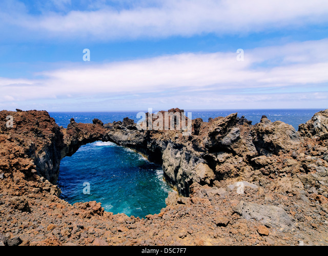 House Sitting Canary Islands