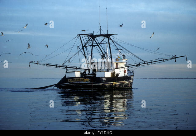 Shrimp boat texas stock photos shrimp boat texas stock for Commercial fishing boat