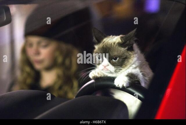 Grumpy Car Stock Photos & Grumpy Car Stock Images - Alamy