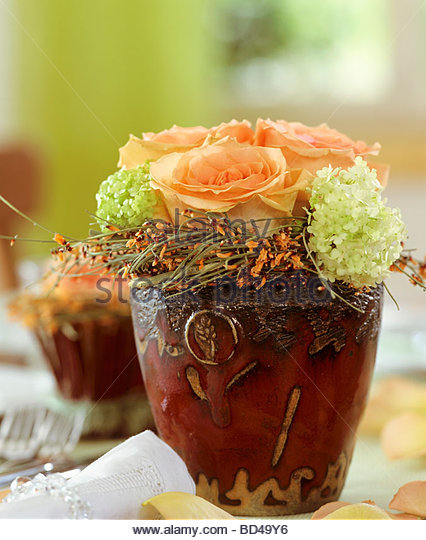 Salmon Colored Herringbone Blazer: Salmon Roses Stock Photos & Salmon Roses Stock Images