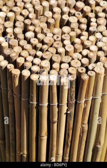 Bamboo Fencing Stock s & Bamboo Fencing Stock Alamy