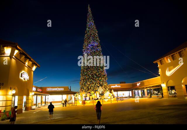 Tallest Christmas Tree Stock Photos & Tallest Christmas ...