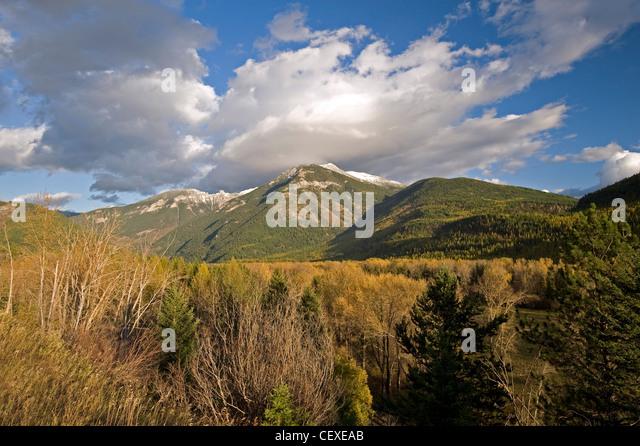 Elk River British Columbia Stock Photos Amp Elk River