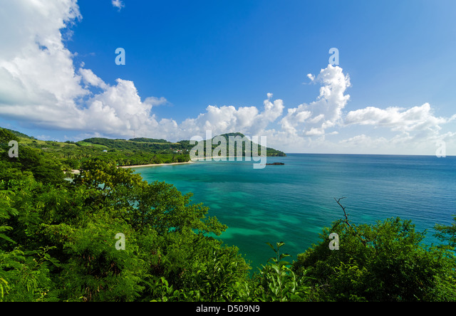 Amed village hillside with green lush tropical forest, Bali Island ...