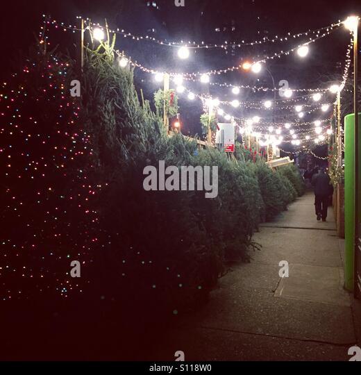 Christmas Trees On Sale Stock Photos Amp Christmas Trees On