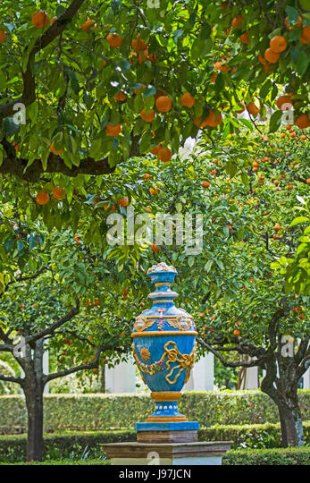 Inspiring Andalusia Spain Fruit Trees In Stock Photos  Andalusia Spain  With Magnificent Spain Seville Maria Luisa Park Orange Trees In Mudejar Style Garden   Stock With Cute Wyevale Garden Centre Soft Play Also Garden Sculptures And Ornaments In Addition Palmers Garden Centre Leicester And Log Garden Cabins As Well As Raised Beds For Gardening Additionally Cadbury Garden And Leisure From Alamycom With   Magnificent Andalusia Spain Fruit Trees In Stock Photos  Andalusia Spain  With Cute Spain Seville Maria Luisa Park Orange Trees In Mudejar Style Garden   Stock And Inspiring Wyevale Garden Centre Soft Play Also Garden Sculptures And Ornaments In Addition Palmers Garden Centre Leicester From Alamycom