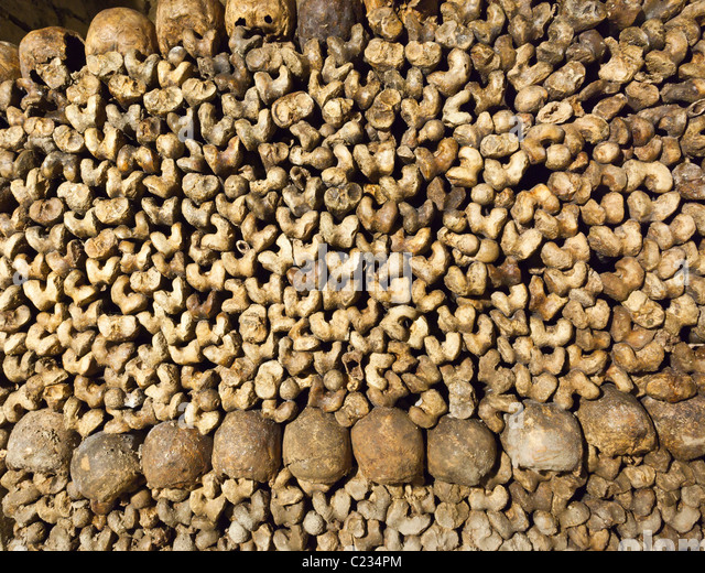 Stack of bones and skulls in the Paris catacombs Paris France. Studio ...