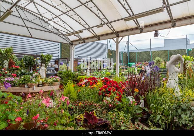homebase garden stock photos homebase garden stock. Black Bedroom Furniture Sets. Home Design Ideas