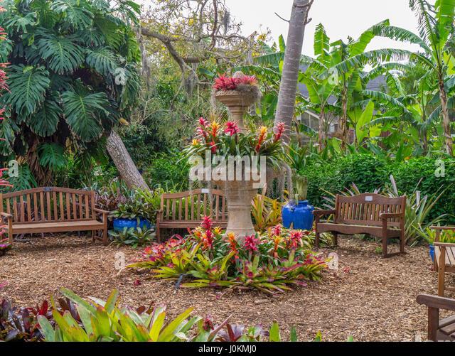 Florida Botanical Gardens Stock Photos Florida Botanical