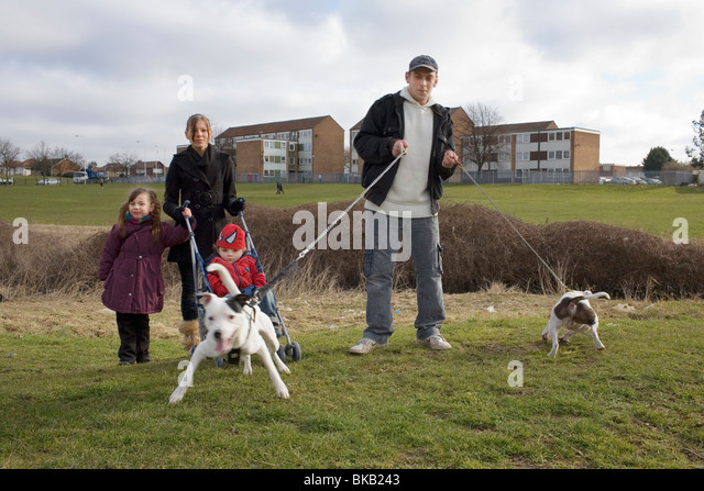 Dangerous Dog Stock Photos Dangerous Dog Stock Images Alamy - 18 ferocious dogs posing beside their beware of dog signs