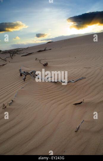 Desert Island Rem