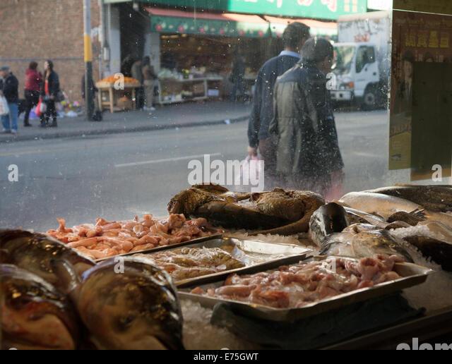 Fresh fish market in chinatown stock photos fresh fish for San francisco fish market