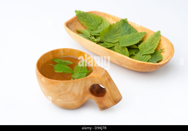 melissa officinalis thesis Orthopaedic thesis journal of medical thesis 2017 the results suggest that herbal tinctures of melissa officinalis which claims to have an alcoholic content.