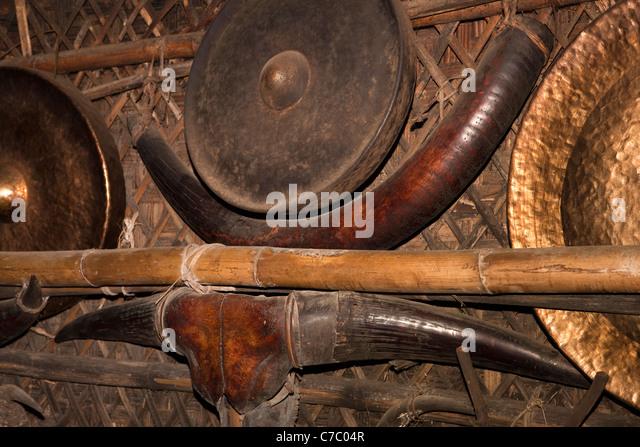 Mithun Stock Photos & Mithun Stock Images - Alamy Horns Inda House