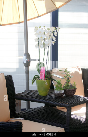 Garden Furniture Nottingham rattan garden furniture stock photos & rattan garden furniture