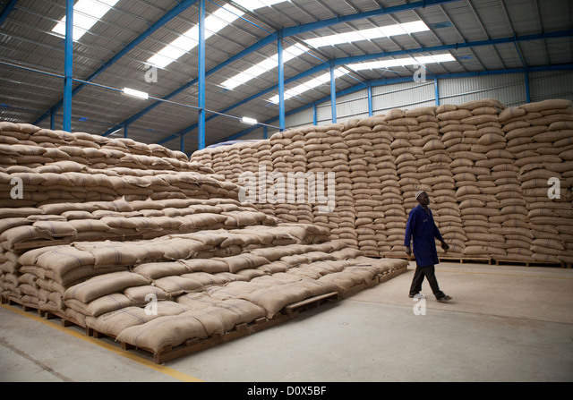 exporting coffee Addis exporter was founded in 1972 and today is one of the oldest and most respected privately held coffee export company in ethiopia.