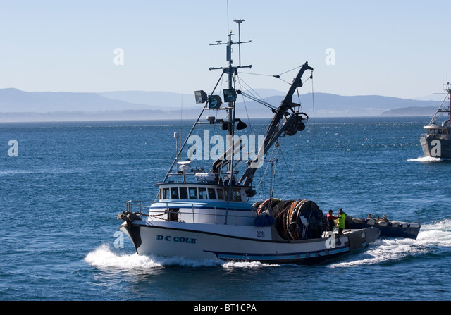 Lime kiln point washington stock photos lime kiln point for Fishing san juan islands