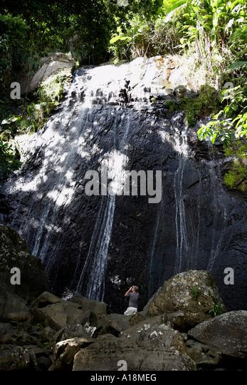 Baño Grande El Yunque:Puerto Rico Rain Forest Stock Photos & Puerto Rico Rain Forest Stock