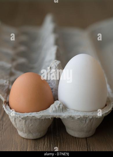 Kiwi egg vs ostrich egg - photo#47