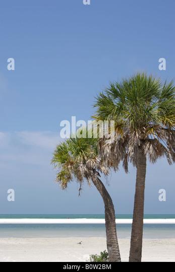 Starfish Hotel Madeira Beach Florida