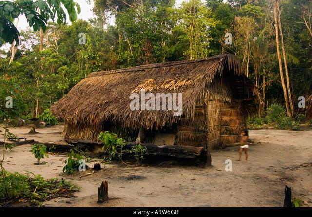 amazon rainforest tribes houses. wooden house of dessanos indian tribe rio taruma amazon state brazil stock image rainforest tribes houses s