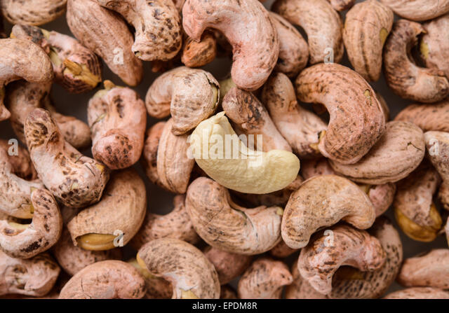 Cashew Nuts In Shell